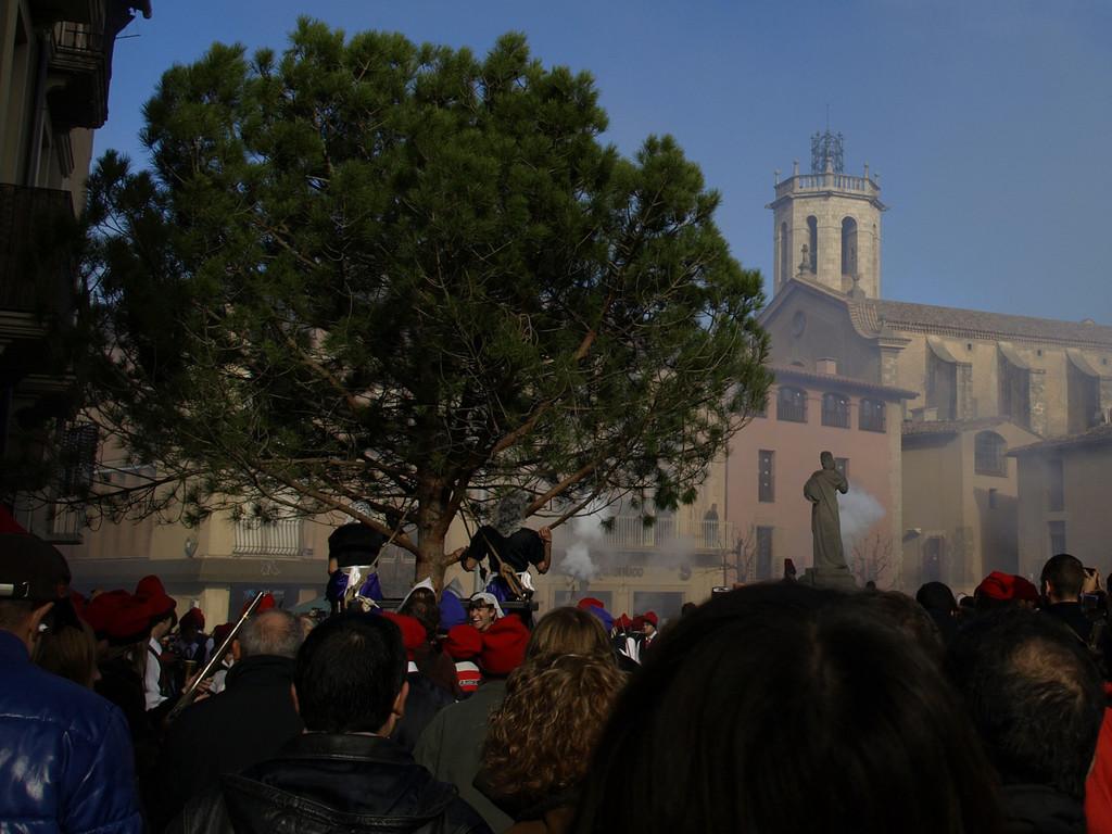 Festa del pi 2009